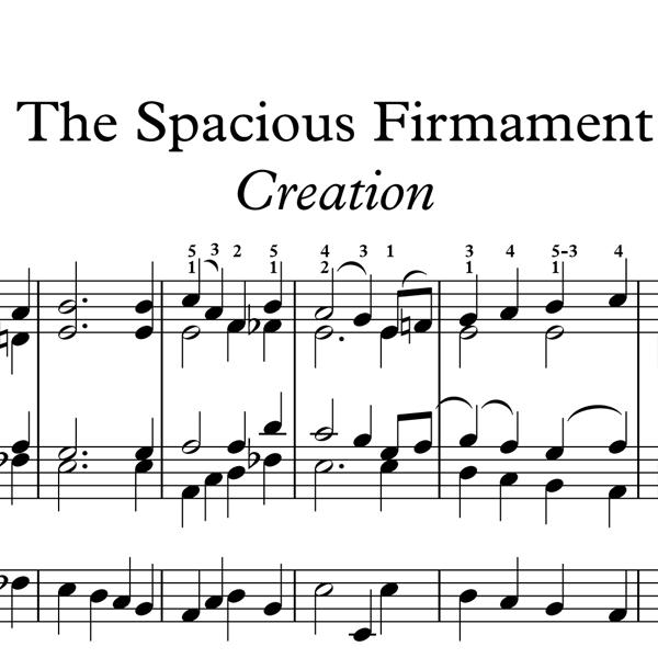 SpaciousF Icon