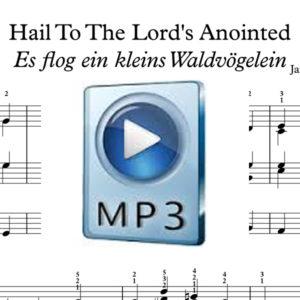 HailTTLA_IMG MP3