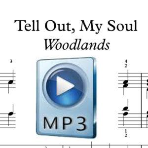 TellOMS IMG MP3